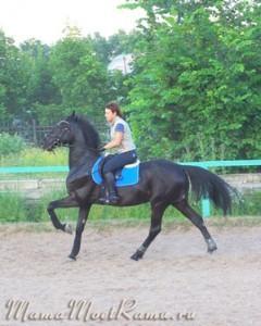 Детский конный спорт. Выбираем КСК. На что обратить внимание