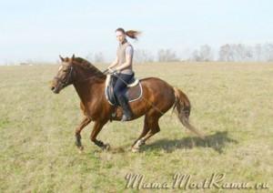 Уроки верховой езды -- совместить приятное с полезным.