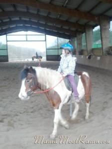 В конном спортивном комлпексе есть все, что надо для верховой езды.