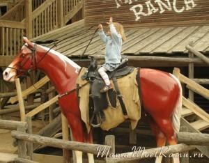 Первые уроки верховой езды для детей.