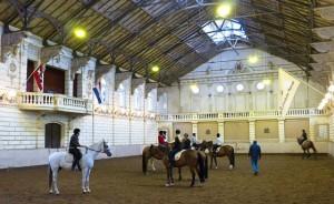 Детский конный спорт. Венский манеж