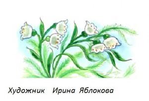 Стихи про бабушек и мам к 8 марта.
